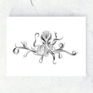 fine line illustratie octopus zeedieren zwart wit studio tosca